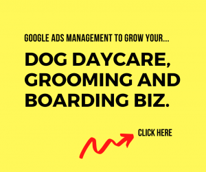 Google Ads For Dog Daycare